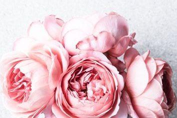 Masque éclat – Eau de Rose et Miel